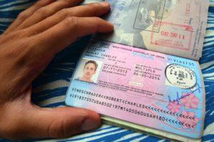 годовая виза в индию
